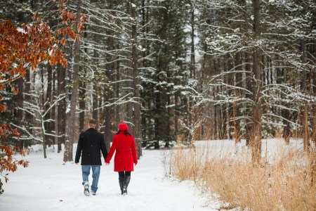 Cleveland, Copyright Genevieve Nisly Photography, Engagements, Holden Arboretum, Ohio, Winter