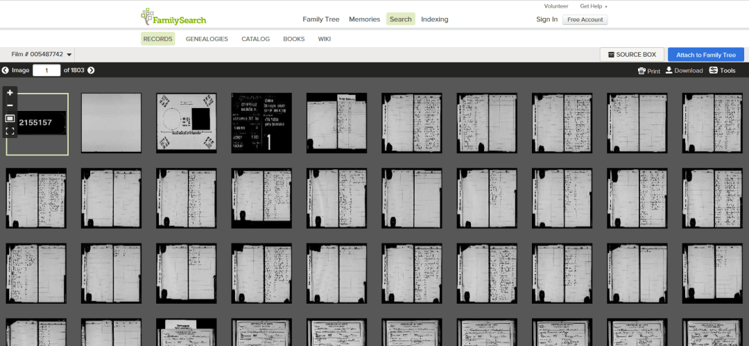 8 Microfilm screen shot