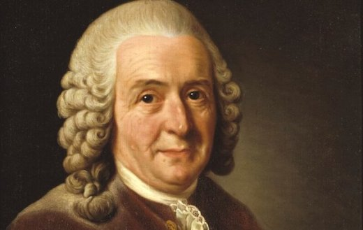 Profile of the Day: Carl Linnaeus