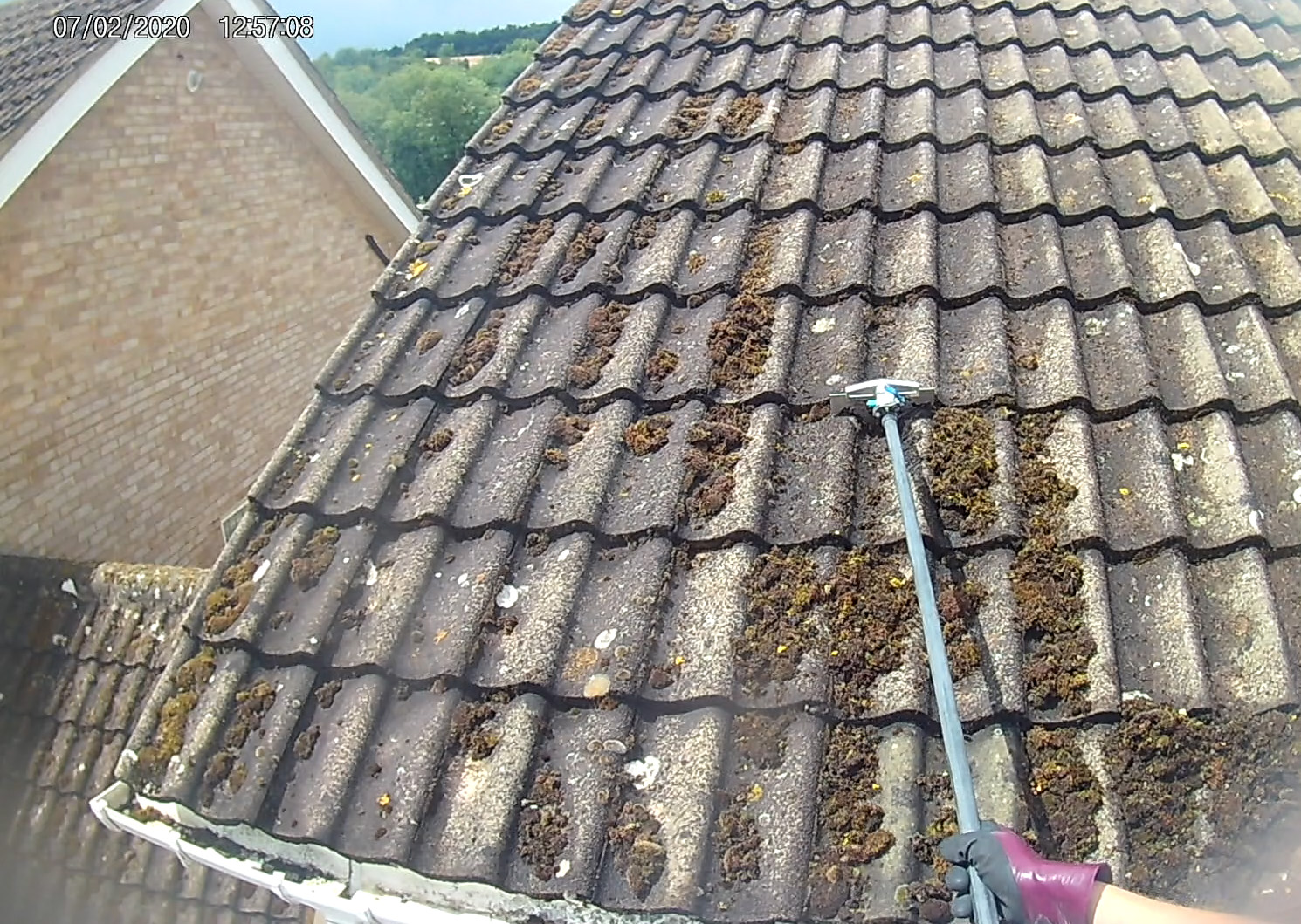 roof cleaning beaconsfield popular