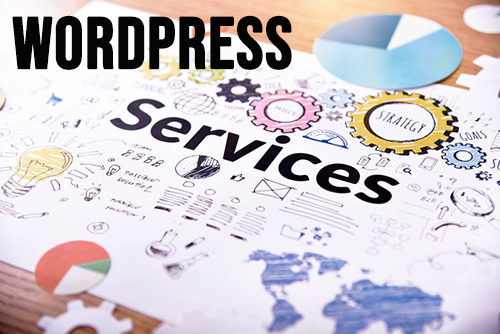 wordpress management and website support