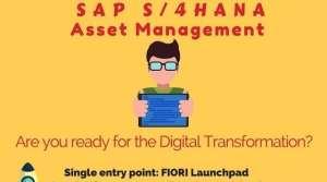 SAP S/4 HANA Asset Management (Info-graphic)