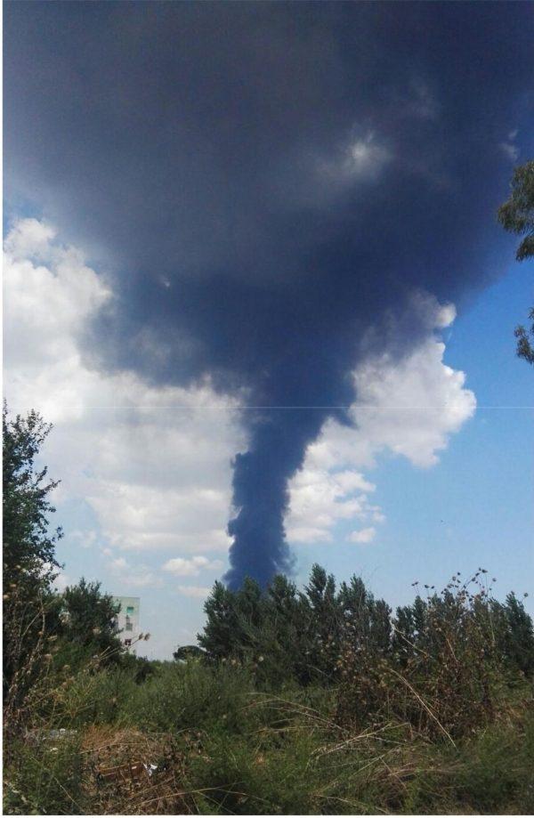 Incendio a Caivano, DIOSSINA