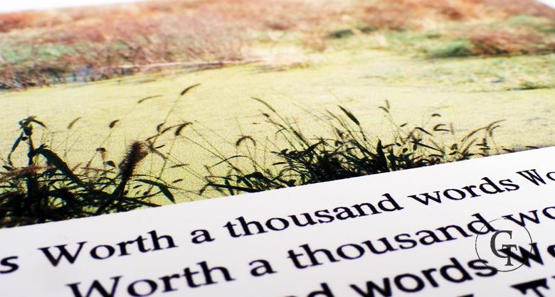 La strada delle parole, una riflessione