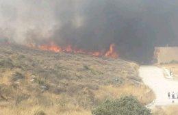 Κάηκαν 6 στρέμματα δασικής και χορτολιβαδικής έκτασης