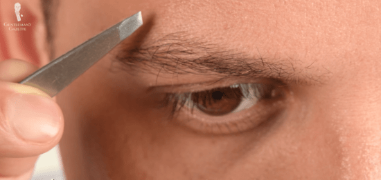 The top edge of the brow always defines the shape