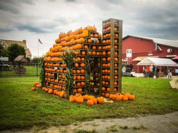 pumpkin-house-milburn
