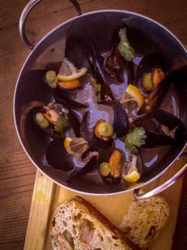 conchas-mussels