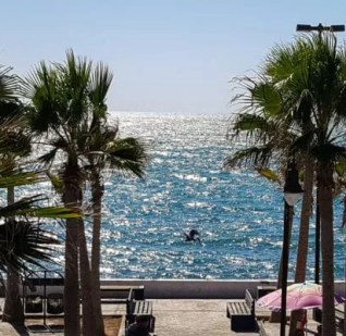 Top 10 Things To Do in Puerto Penasco: Where the Desert Meets the Sea
