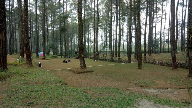 Harga Tiket Masuk Orchid Forest Lembang