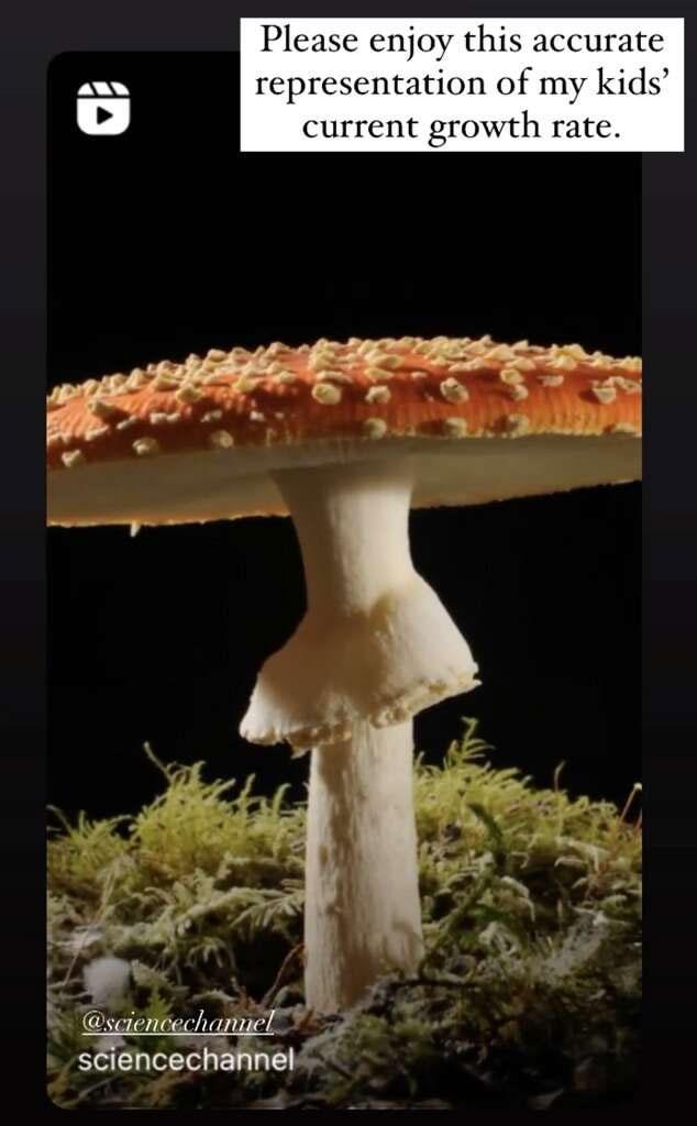 356920 2011226 updates Jennifer Garner compares children to mushroom fungus