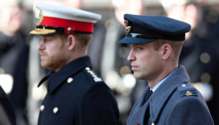 Princes William and Harry have been close, united by the shared trauma of losing their mother Diana