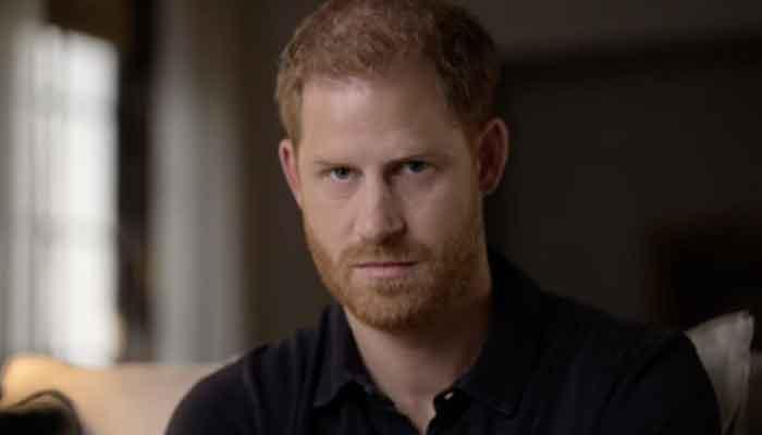 Prince Harry did not meet Queen Elizabeth during UK visit?