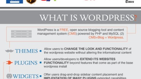The Power of WordPress ( Infographic )