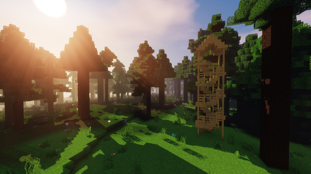 The Bialowieza Forest In Minecraft Geoboxers