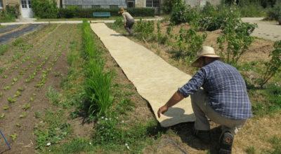 Géochanvre paillage chanvre biodégradable