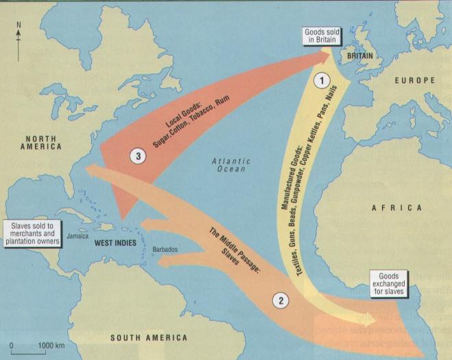 trans-atlantic slave trade essays