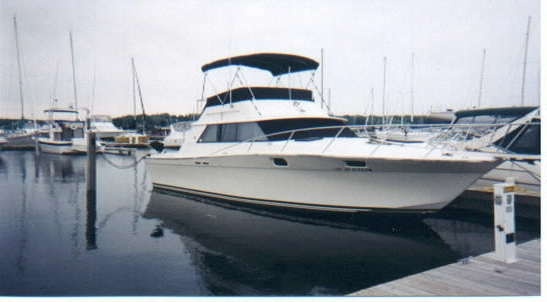 Rochester Boats