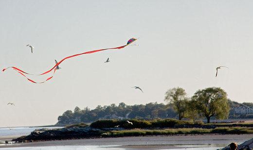 kite-over-west-haven.jpg