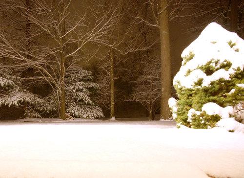 measurable-snow.jpg