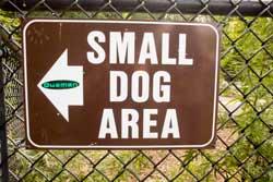 small-dog-area.jpg
