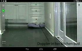 doppler-in-the-kitchen
