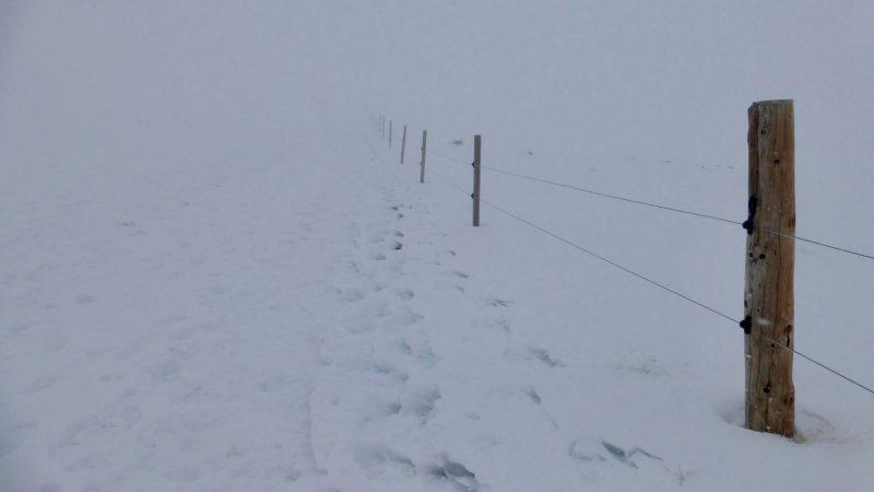 Tast de neu al coll de les Barraques