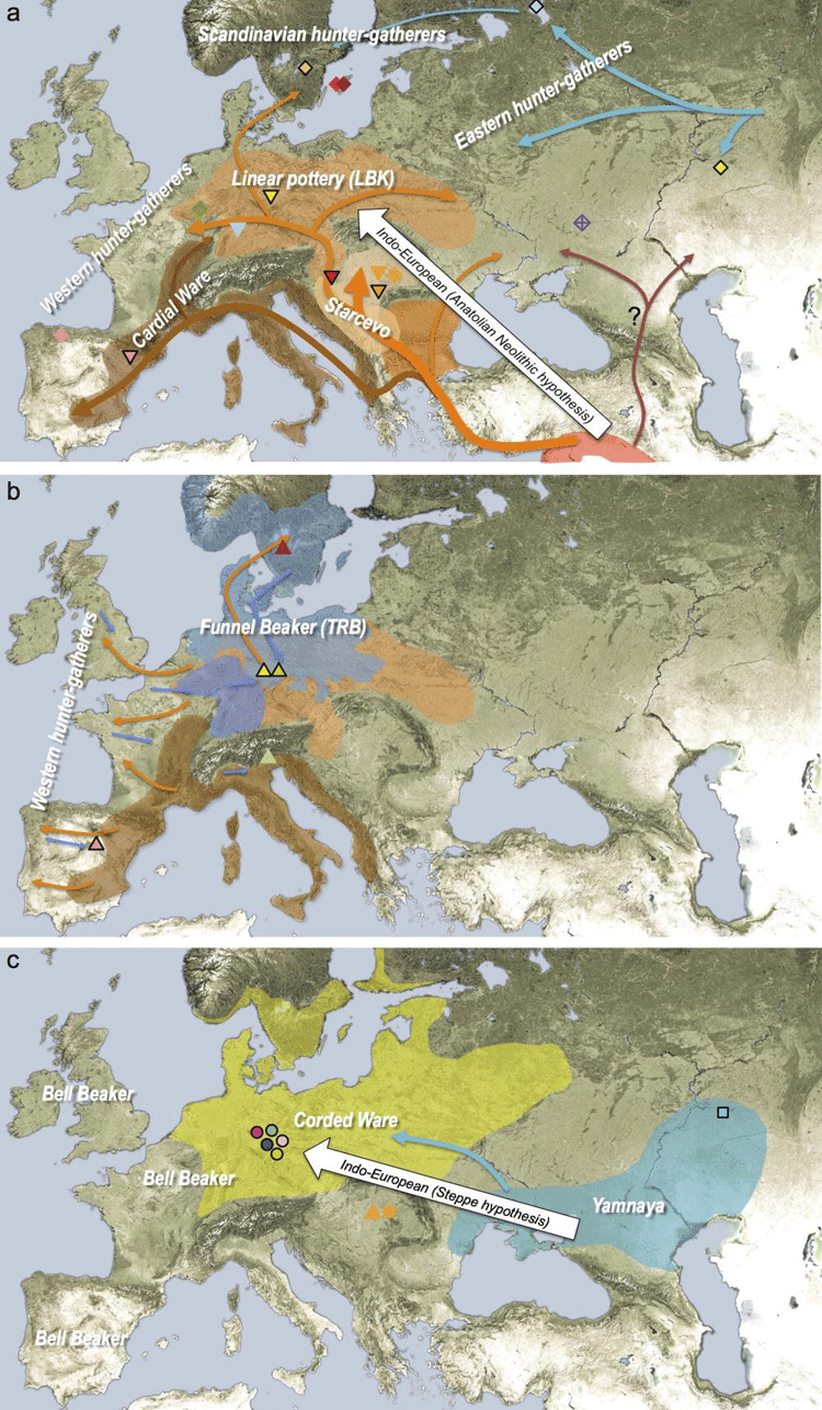 Geographic distribution of archaeological cultures and graphic illustration of proposed population movements.  Source: Haak et. al, 2015).