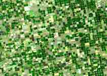 How Geography is Used to Study Agriculture