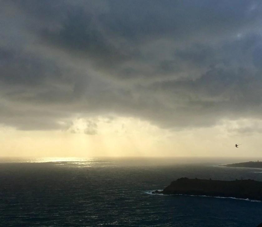 Weather at Kīlauea Point National Wildlife Refuge.  Jonathan Felis, Western Ecological Research Center. Public domain.