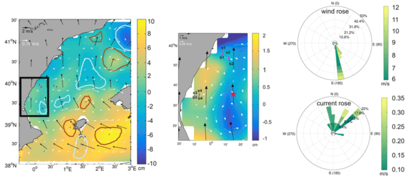 An example map showing a 6-hours snapshot (left panel) on 27 August 2012 of ADT (cm) from altimetry and the corresponding 6-hour mean wind field as obtained from CCMP between 03:00–09:00 hours, together with several seabird tracks driven by the local wind. Figure: Sánchez-Román et al., 2019.