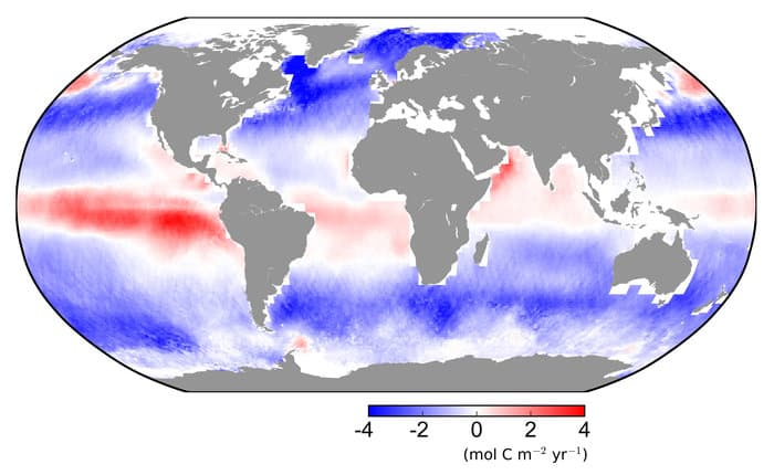 Carbon dioxide continually flows into (blue) and out (red) of the ocean. The oceans store carbon for thousands of years, so most of the carbon dioxide coming out of the ocean within the equatorial pacific was previously in the atmosphere before the time of the industrial revolution. Map: University of Exeter College of Life and Environmental Sciences