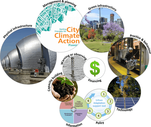 Examples of city climate adaptation action themes. The size of the circle is proportional to the number of actions listed in the 80 city plans analysed, for each of the ten categories, from largest to smallest: physical infrastructure (73 actions); management and planning (62); green infrastructure (57); practice and behaviour (55); technology (52); policy (49); information (45); capacity building (40); warning or observing (22); financing (20). Source: Butt et al., 2018.