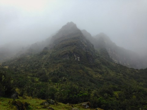 One last look back at the páramo above, still shrouded in mist