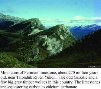 permian-limestone