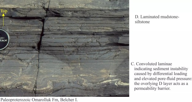 Flame Structures Archives Geological, What Is Convolute Bedding In Geology