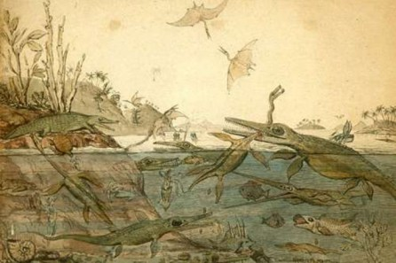 Rapid rise of the Mesozoic-GeologyPage
