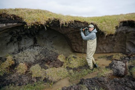 Carbon potential of Alaska-GeologyPage