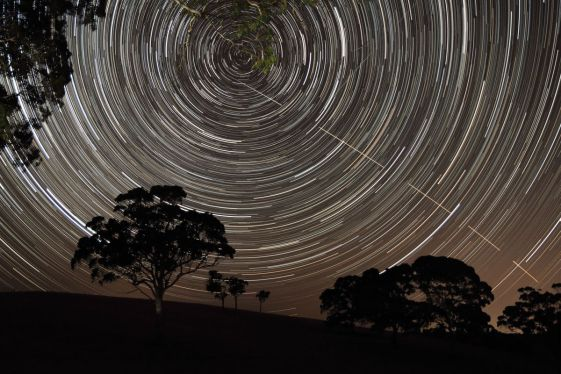 """The International Space Station appears to pierce a path across the radiant, concentric star trails seemingly spinning over the silhouettes of the trees in Harrogate, South Australia. Highly Commended in the """"Young Astronomy Photographer"""" category. Image: Scott Carnie-Bronca"""