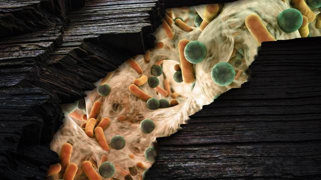 This is an illustration of microbes inside a fracking well. Credit: Illustration courtesy of PNNL