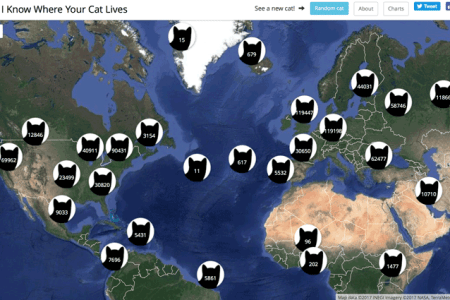 World map cat playing path decorations pictures full path decoration so the continents are just a cat coughing up a hairball funny so the continents are just a cat coughing up a hairball post submit share petculiar cat map of gumiabroncs Choice Image