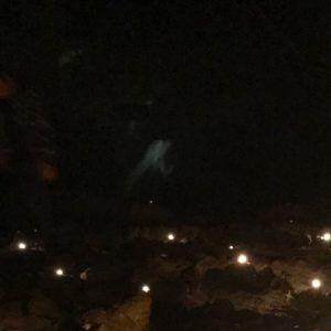 Spirit orbs
