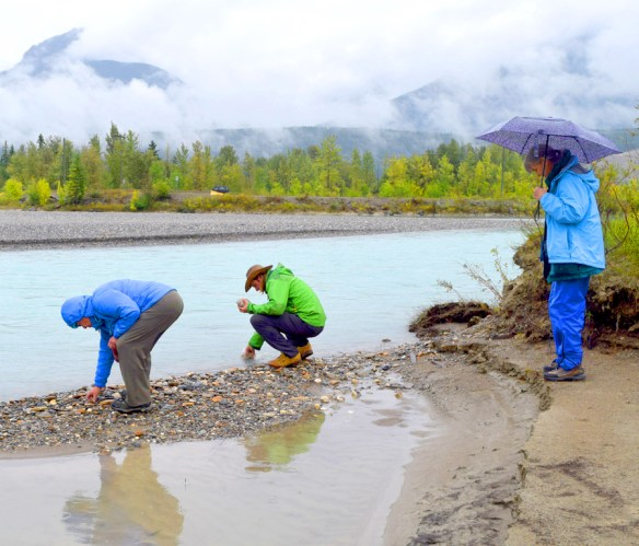One of the trip's frequent rainy days – but we still had fun by the Kicking Horse River at its confluence with the Columbia River, near Golden, British Columbia.