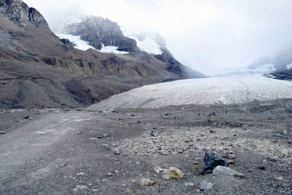 The Athabasca Glacier, a part of the Columbia Icefields in Alberta, Canada, is receding on an average of 16 feet per year.