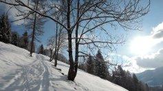Kurz oberhalb vom Parkplatz beim Lammertaler Hof geht es über freie Wiesen in der Sonne