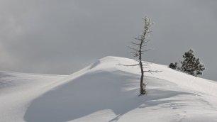 Wind, Sonne, Pulverschnee ...