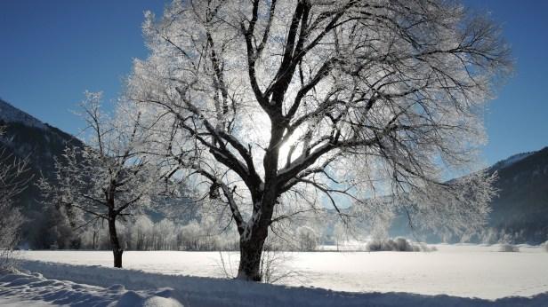Winterzauber am Hintersee