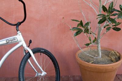 pink wall bike