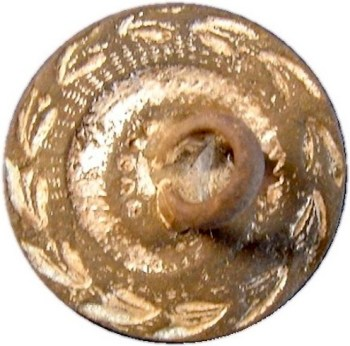 1783-1790 RATTLE SNAKE BUTTON RJ Silversteins georgewashingtoninauguralbuttons.com R
