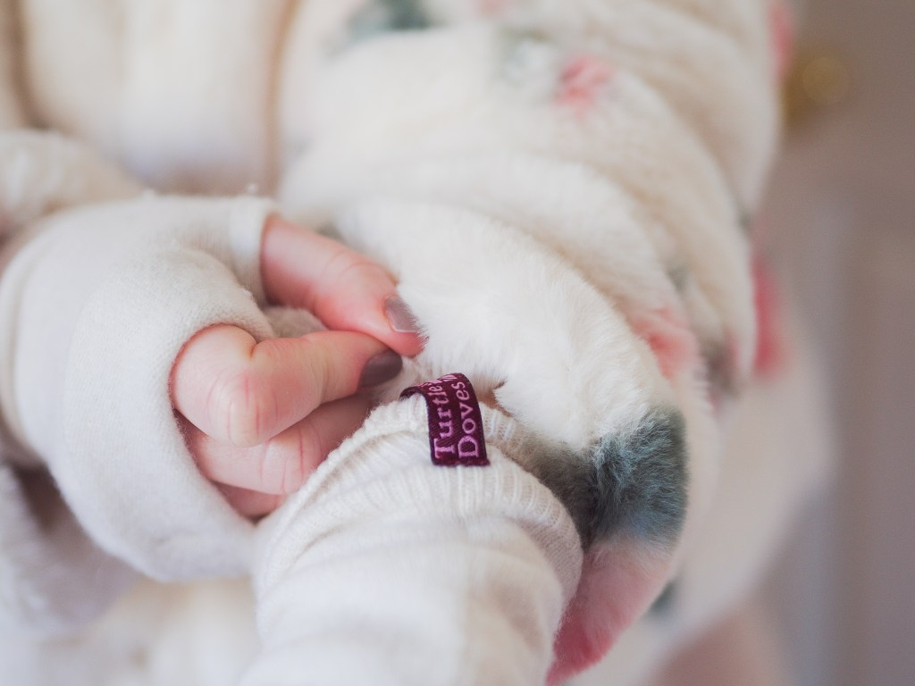 Turtle Dove Gloves for Raynaud's Disease Review - Georgie xoxo